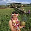 """O vara ,,Aloha"""" in Hawaii"""